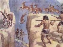 История меха
